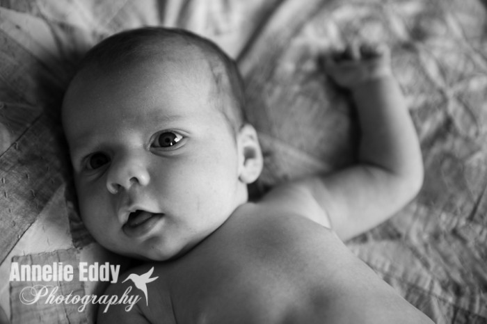 Newborn Photography-2