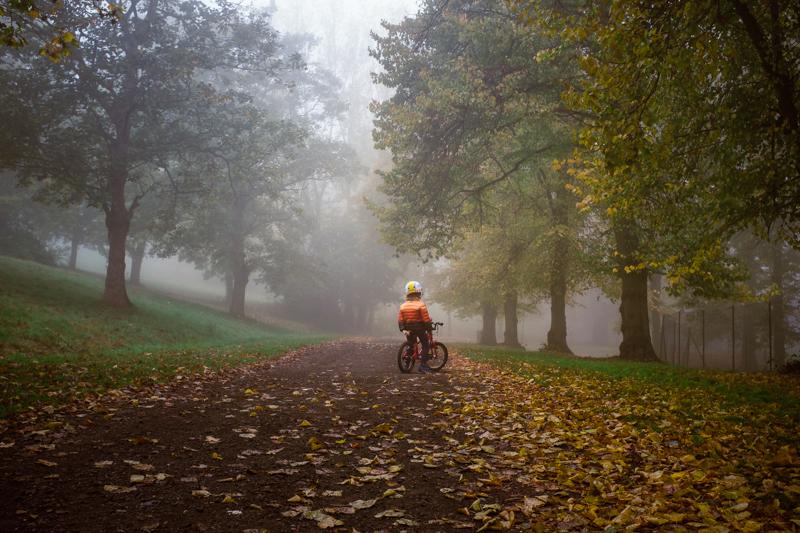 Fog in Alexandra Palace