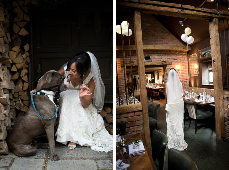 Bride with mastiff dog at White Horse Chichester