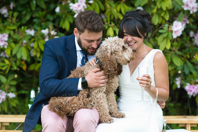 Bride and groom portrait with cockapoo puppy