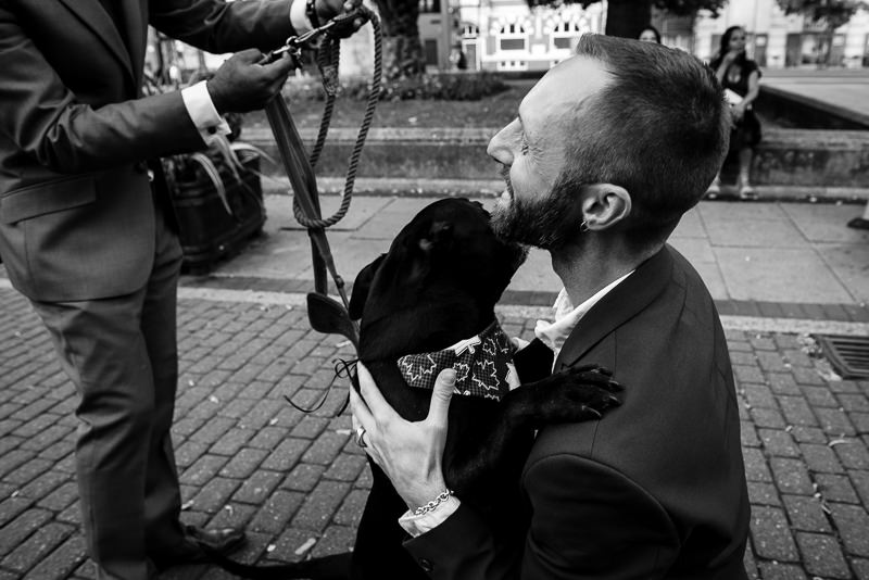 Dog at Hackney Town Hall wedding